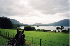A ride through Killarney